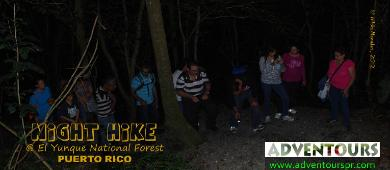 PUERTO RICO - NIGHT HIKES AT EL YUNQUE NATIONAL FOREST