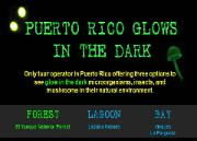 PUERTO RICO GLOWS IN THE DARK - Forest, Lagoon, Bay